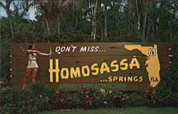 Don't miss Homosassa Springs - Nature's Own Attraction