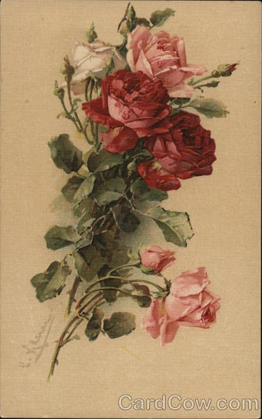 Red, Pink and White Roses C. Klein