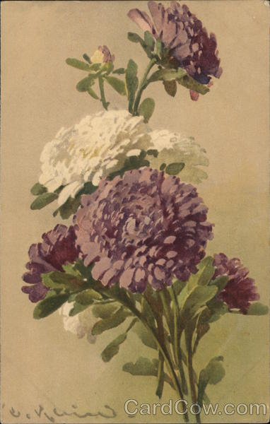 Purple and White Flowers with Green Stems and Leaves