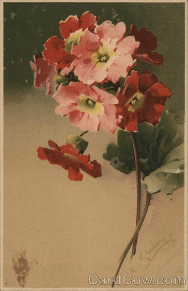 Pink and Red Flowers with Green Leaves C. Klein