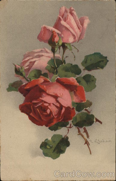 Pink Roses with Buds and Green Leaves C. Klein