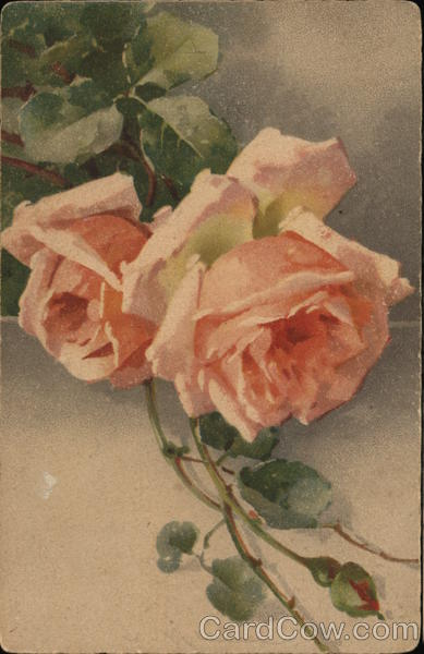 Pink Roses with Stems C. Klein