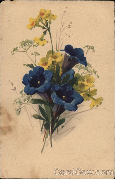 Blue and Yellow Flowers with Green Leaves C. Klein