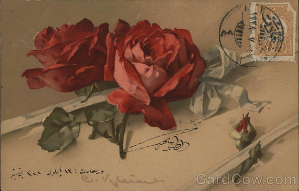 Red Roses C. Klein Cancelled on Front (COF)