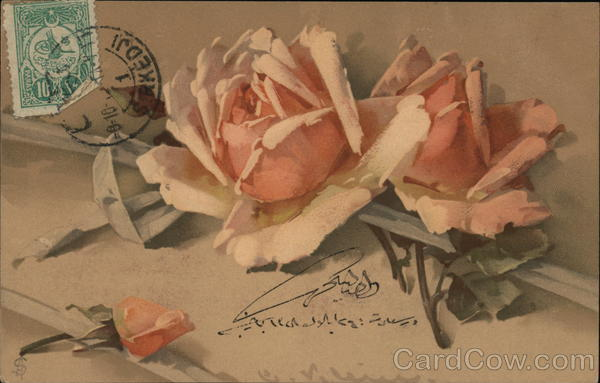 Pink Roses with Green Leaves and White Ribbon C. Klein