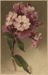 Purple Flowers on Stem with Green Leaves Postcard