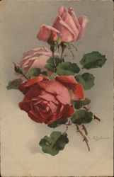Pink Roses with Buds and Green Leaves