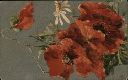 Orange Poppies with One Daisy Postcard