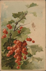 Red Berries with Black Dots