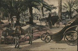 Greetings From Bordighera - Donkey Cart