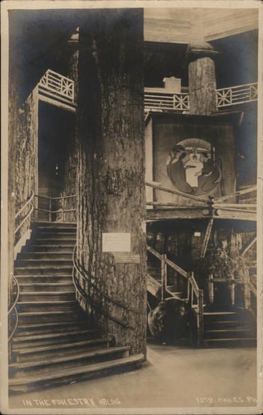 In the Forestry Building Seattle Washington 1909 Alaska Yukon-Pacific Exposition