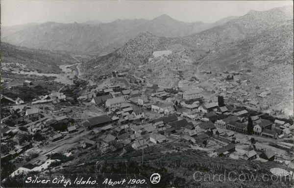 Aerial View - About 1900 Silver City Idaho