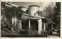 House and garden Postcard