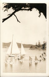 Group of Small Sailboats (students?)