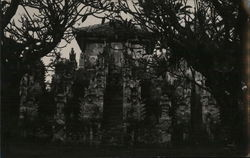 View of Temple in Jungle Postcard