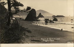 Beach at Port Orford Postcard