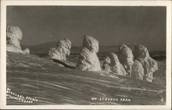 On Stevens Peak Postcard