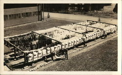 Company Clotheslines - Farragut Naval Training Station