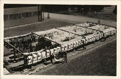 Company Clothesline - Farragut Naval Training Station