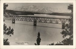 Robertson River Bridge Postcard