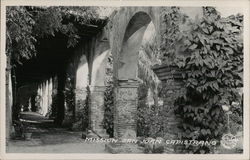 Mission Exterior Arches and Foliage