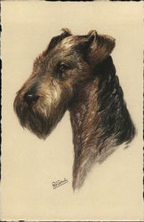 Illustration of Airedale Terrier