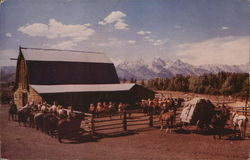 Cattle Ranch in Teton Valley