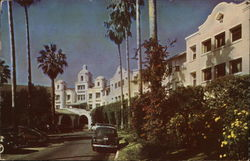 Palm Lined Drive of the Beautiful Beverly Hills Hotel