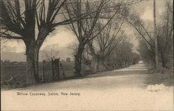 Willow Causeway