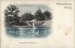 Swimming Pool at Hamilton Park
