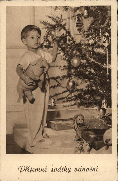 Boy with an elephant you posing with a Christmas tree