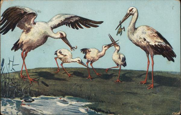 Storks Catching Frogs and Worms