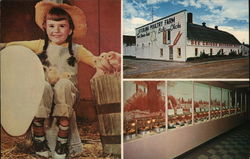 Sterling Poultry Farm and Chick Museum