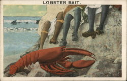 Lobster Bait
