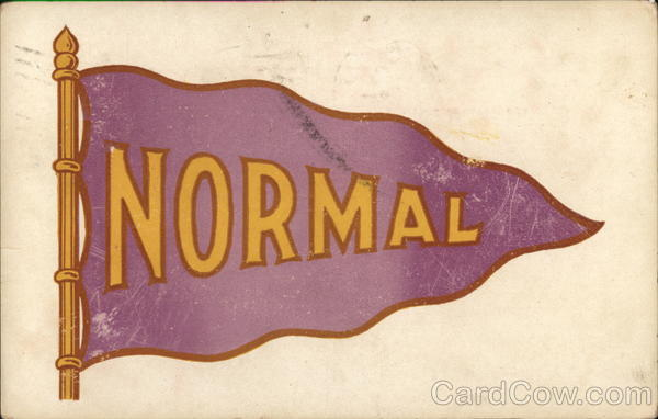 Iowa State Normal School Flag Cedar Falls School Pennants