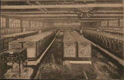 Danbury Fair - Poultry Department