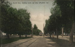 Euclid Ave., Looking North, Car Line Postcard