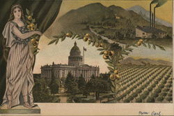 State Capitol and Orange Groves