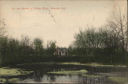 Banks of the Whote River Postcard