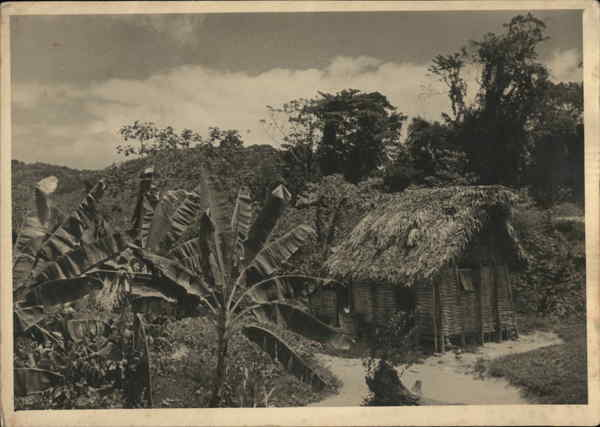 Colegrove - Thatched Hut, Tropical Scene Trinidad Caribbean Islands