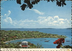 Cruz Bay harbor St John Postcard