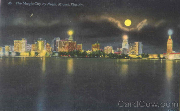 The Magic City By Night Miami Florida