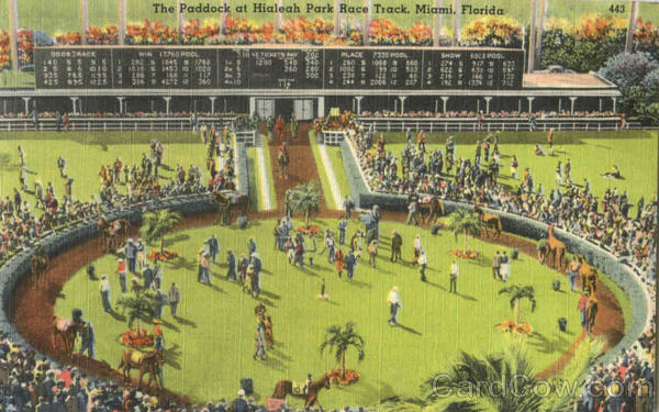 The Paddock At Hialeah Park Race Track Miami Florida