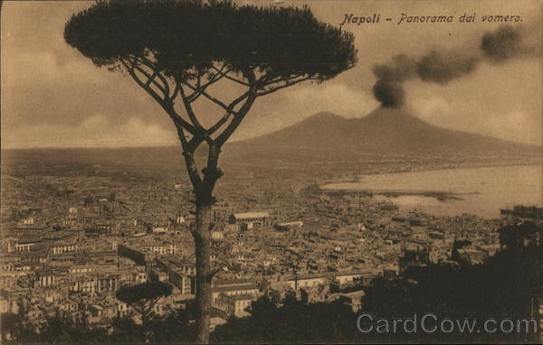 View of City towards Mount Vesuvius Naples Italy