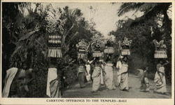 Carrying offerings to the temples - Bali