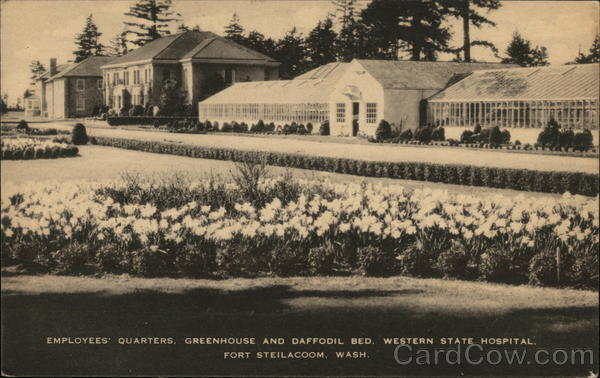 Employees' Quarters, Greenhouse and Daffodi Bed. Western State Hospital Fort Steilacoom Washington