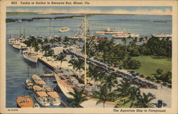 Yachts at Anchor in Biscayne Bay