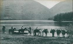 Watering Horses at Lake - Northwest Airlines