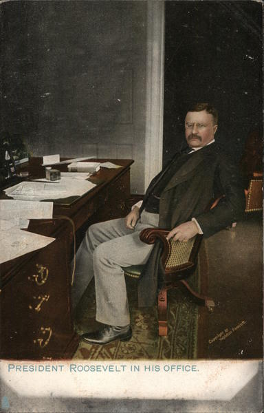 President Theodore Roosevelt in his Office