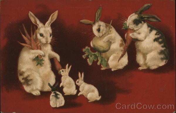 Rabbits and Bunnies Eating Carrots and Turnip With Bunnies